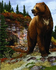 Eyewitness accounts of mysterious Ice Age beasts, thousands of years after they were supposed to be gone. Prehistoric Wildlife, Prehistoric World, Prehistoric Creatures, Wildlife Art, Short Faced Bear, Dinosaurs Extinction, North American Animals, Dinosaur Era, Mysterious Universe