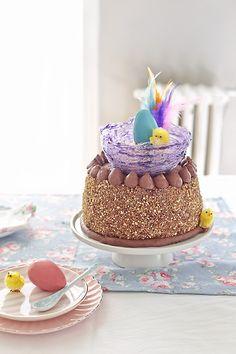 Cómo hacer una mona de Pascua con genovesa de chocolate, ganache, huevos de chocolate de colores y un nido de Isomalt. Fotos del paso a paso.