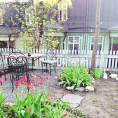 Wooden Vallila, Helsinki  Finland French Chairs, Wooden House, Helsinki, Garden Inspiration, Finland, Tulips, Living Spaces, Cottage, Outdoor Structures