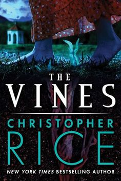 Between dreams and reality | The Vines de Christopher Rice (VO)