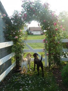 Love this country style fence and the flower arbor over the gate is an awesome finishing touch!
