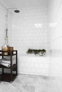 bathroom remodel ideas white bathroom with plants in the shower
