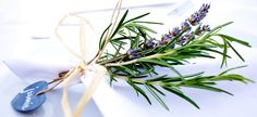 Learn how to use rosemary in the kitchen and around the house. Rosemary has so many uses including making rosemary butter or fresh rosemary lemonade. I enjoy rosemary lemon bath salts. It has many good health benefits too. Lavender Tie, Lavender Garden, Italy Wedding, Wedding Day, Wedding Dreams, Mimosa Brunch, Wedding Planner, Destination Wedding, Rosemary Plant