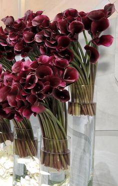 How to #DIY a stunning floral arrangement on a budget from celeb florist Jeff Leatham #floral #flowers #bouquets