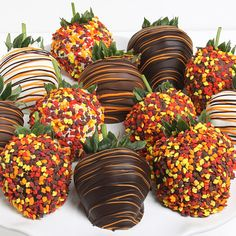 covered strawberries for fall-great idea if you can get them in the fall months   :-)  (no site)