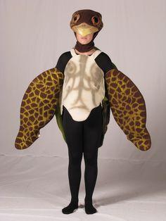 Sea Turtle                                                                                                                                                                                 More