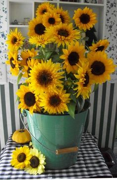 Sunflower arrangement in green bucket Happy Flowers, All Flowers, My Flower, Yellow Flowers, Beautiful Flowers, Sunflower Garden, Sunflower Art, Sunflower Fields, Sunflowers And Daisies