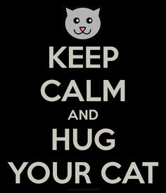 """Keep Calm and Hug Your Cat""  I will if he'll let me!"
