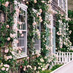 Front door wonders...repost from Gal Meets Glam @juliahengel