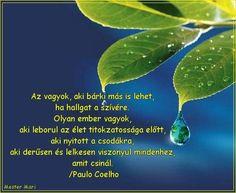 coelho idézetek élet 20+ Best Paulo Coelho images | paulo coelho, idézet, gondolatok