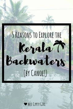 A trip down the Kerala backwaters will be one of the most memorable experiences on your India trip, and a canoe is the best way to see them. Here's why!