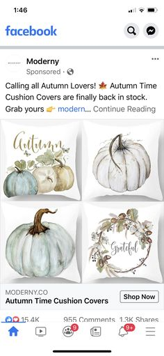Cushion Covers, Throw Pillow Covers, Throw Pillows, Fall Decor, Table Decorations, Food, Pumpkins, Cushions, Pillow Shams