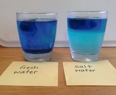 Temperature, salinity and water density - STUDENT ACTIVITY. Cold water is denser than warm water, so it tends to sink. Seawater is denser than freshwater. Salinity, temperature and depth all affect the density of seawater. Physical Science, Science Fair, Teaching Science, Salt And Water, Fresh Water, Water Experiments, Kitchen Science, Ocean Depth, 6th Grade Science