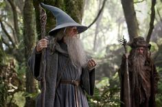 Gandalf the Grey and Radagast the Brown