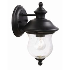 Design House Highland 1 Light Outdoor Downlight Wall Lantern - front porch?  Something the birds can't nest on please!