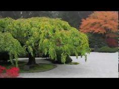 Music for Relaxation & Meditation | Zen Garden by Colin Willsher