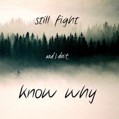 Clarity feat. Foxes - Zedd #Lyrics