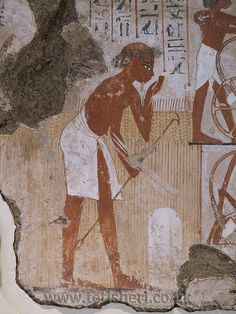 Detail of a farmer surveying field boundaries, from the tomb-chapel of Nebamun. 18th Dynasty (c.1350 BC), Thebes, Egypt. British Museum