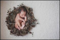 Nested newborn