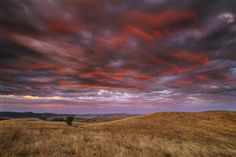 Landscape, red sunset over grasslands in coastal mountain range.