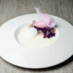 Grape, Yogurt & Black Currant Plated Dessert // Fuel your passion with more recipes at www.pregelrecipes.com
