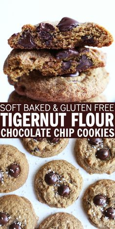 Delicious soft baked, dairy free, and gluten free Tigernut Flour Chocolate Chip Cookies will be your new favorite dessert! So easy to make and perfectly chewy! thetoastedpinenut.com #thetoastedpinenut #soft #baked #glutenfree #dairyfree #chocolate #chip #cookies #tigernut #flour