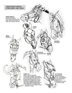 Historic Horse Head Gear Part 2 by sketcherjak on DeviantArt