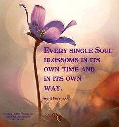 Every single Soul blossoms in it's own time and in it's own way ༺❁༻ April Peerless