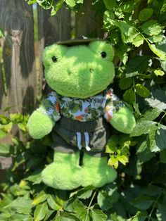Dinosaur Stuffed Animal, Stuffed Animals, Fluffy Animals, Cute Animals, Frog Pictures, Clay Art Projects, Frog Art, Green Frog, Cute Frogs