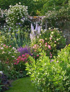 Andre eve garden