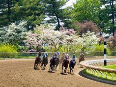 Keeneland is a Thoroughbred horse racing facility and sales complex in Lexington, Kentucky, USA. Fall meet opens October 5, 2012.  Google Image Result for http://4.bp.blogspot.com/-lG567yOyGDE/TZ8und8oeAI/AAAAAAAAAh0/uKG672oFZto/s1600/keeneland.jpg