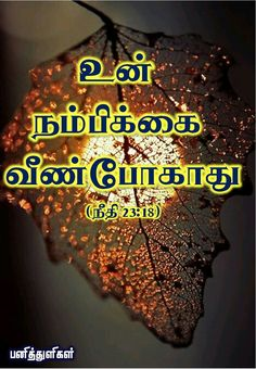 """""""your hope will not be cut off"""" - ( proverbs Bible Words In Tamil, Bible Quotes, Bible Verses, Proverbs 23, Advanced English Vocabulary, Jesus Wallpaper, Bible Promises, Divine Mercy, Faith In God"""