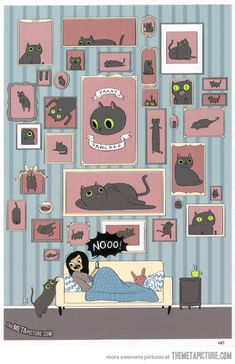 A day in the life of cat people…