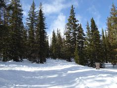 Snowshoe Trail We Like: Old Monarch Pass