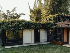 mid century modern home covered in vines
