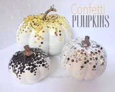 Confetti Pumpkins FB LOVE!  I think these are the winners!