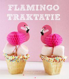 flamingo traktatie