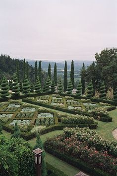 Parterre Garden and spiral topiaries. Famous Gardens, Amazing Gardens, Beautiful Gardens, Landscape Architecture, Landscape Design, Garden Design, Formal Gardens, Outdoor Gardens, Topiary Garden