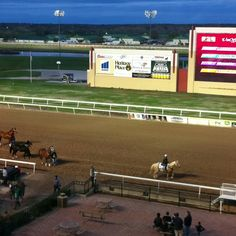 Great view from Silks at Remington Park, OKC. Such beautiful horses!