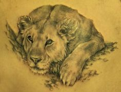 http://topbagsja.com/wp-content/uploads/2013/12/lioness-tattoos-45556.jpg