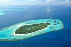 Ayada Maldives  Maguhdhuvaa Island -Gaafu Dhaalu Atoll - Republic of Maldives  Tel : + 960 684 4444 | Fax : +960 684 5555 | Sales & Reservations : + 960 7303010  reservations@ayadamaldives.com   Türkiye İletişim Ofisi: 444 6200