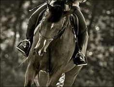 Keep Clam and Ride Horses