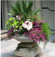 urn on pool corner photographed by Heather Moll-Dunn Landscape and Garden Design on the Gardens for Connoisseurs Tour around Atlanta. Big Potted Plants, Big Planters, Outdoor Planters, Outdoor Landscaping, Outdoor Gardens, Landscaping Ideas, Container Flowers, Container Plants, Container Gardening