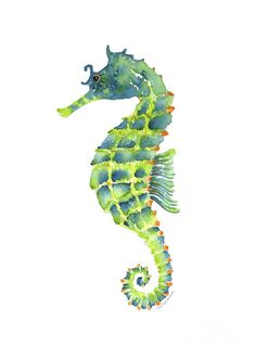 watercolor seahorse painting | Seahorse Painting Painting - Teal Green Seahorse by Amy Kirkpatrick