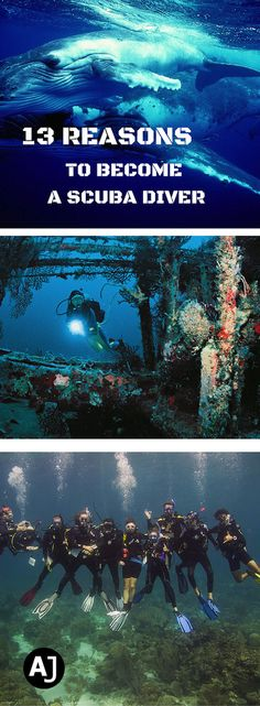 Are You Not a Scuba Diver Yet? This is what you are missing.