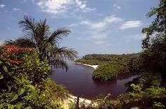 Brazil's Amazon River.