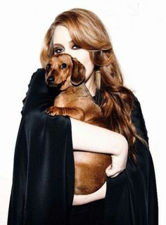 Adele with her dachshund Louie, named for the legendary Louis Armstrong. of course best people own a dachshund. JFK and adele you cannot beat it Louis Armstrong, Adele New Album, Dog Love, Puppy Love, Celebrity Dogs, Adele Love, Adele 25, Weenie Dogs, Doggies