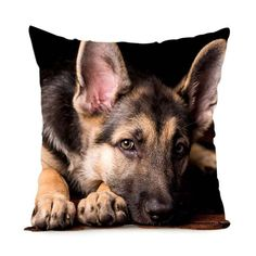 German Shepherd Dog Throw Pillow Cases