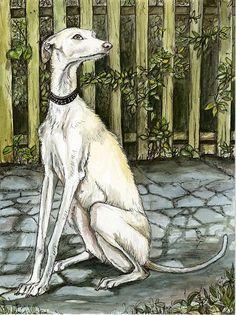 L'amitié sans fin - lévrier Galgo chien Art Print