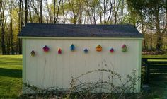 My weekend project! Painted and put up bird houses on my shed. , I also wanted to show you a solution that worked for me! I saw this new weight loss product on CNN and I have lost 26 pounds so far. Check it out here http://weightpage222.com